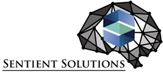 Sentient Solutions - Financial Consultancy, Business Plan Writing